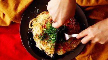 gyoza udon-noodles