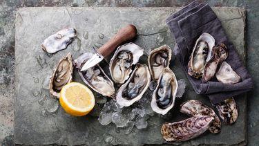 vis & gin / oesters / kerst amuses