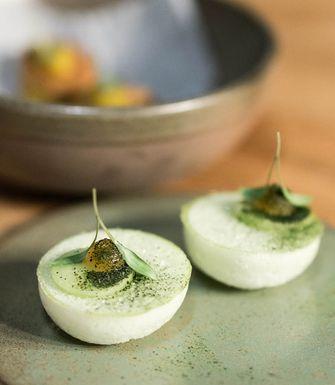 De Zeeuw macaron van komkommer