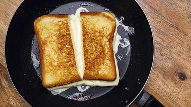 tosti stock