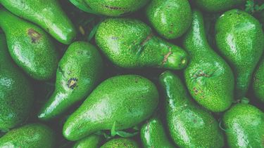 avocado's