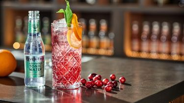 Afbeelding cocktail voor Kerst: gin-tonic met cranberry