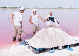 zout oogsten fleur de sel