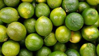 Limoenen verschil
