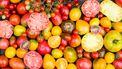 tomaten markt