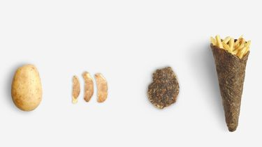 Frietzak van aardappelschil