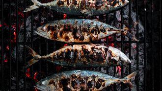 Sardines grillen