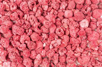 gevriesdroogd fruit