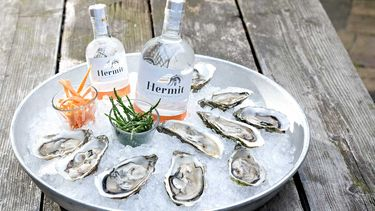 Hermit gin oesters