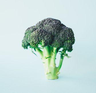 Broccoli-koken