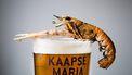 Bierbrouwerijen in Zuid-Holland
