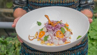 Online ceviche workshop / ceviche clasico