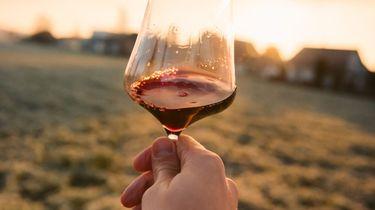 Nederland wijnland