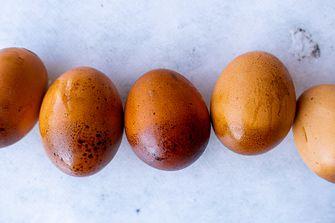 gerookte eieren van smoked eggs europe