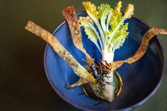 Sea kale bij Taiko in het vegan lentemenu