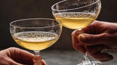 Afbeelding bij martini uit Wereldwijd Borreltijd