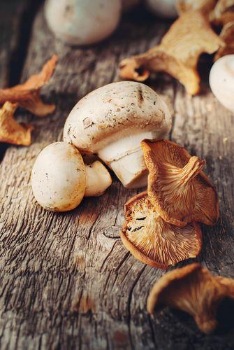 gerechten met paddenstoelen