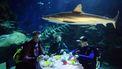 onderwaterrestaurant