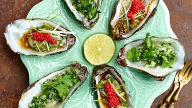 Nikkei oesters liggend beeld