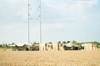Graanveld in Nieuw-Vennep