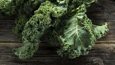 Stock boerenkool kale