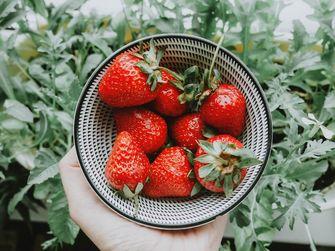 Verse aardbeien in schaaltje