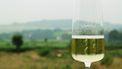 Wijnroute door Limburg